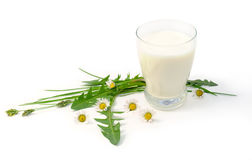 Vidrio con leche Fotografía de archivo