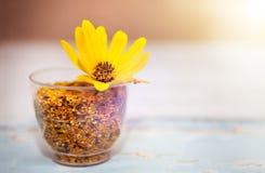 Vidrio con polen de la abeja y la flor amarilla en ella Fotos de archivo
