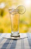Vidrio con té y el limón Imagen de archivo libre de regalías