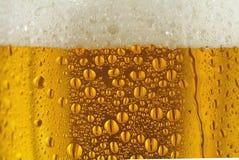 Vidrio condensado de cerveza imagenes de archivo