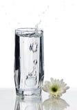 Vidrio de agua con el chapoteo y la flor fotografía de archivo libre de regalías