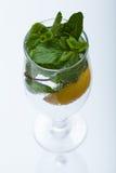 Vidrio de agua con la menta Imagen de archivo libre de regalías
