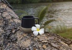 Vidrio de agua con las flores Imagenes de archivo