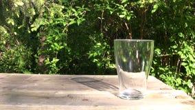 Vidrio de agua dulce almacen de video