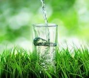 Vidrio de agua en fondo de la naturaleza Imágenes de archivo libres de regalías