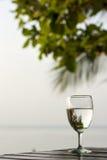 Vidrio de agua pura en una tabla oscura en la playa con una palmera en el fondo Fotografía de archivo