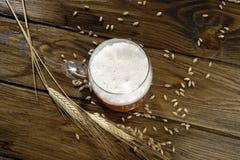 Vidrio de alta cerveza de las opiniones Fotografía de archivo
