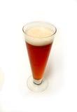 Vidrio de cerveza Fotografía de archivo libre de regalías