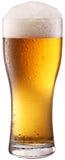 Vidrio de cerveza. Foto de archivo