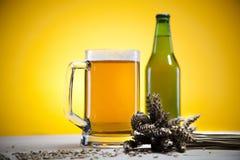 Vidrio de cerveza con el grano Imagen de archivo libre de regalías