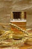 Vidrio de cerveza con la cebada. Fotografía de archivo libre de regalías