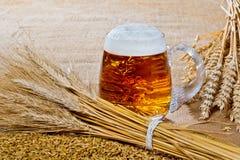 Vidrio de cerveza con la gavilla de cebada Foto de archivo libre de regalías