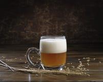 Vidrio de cerveza con la manija Fotos de archivo