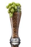Vidrio de cerveza con los ingredientes Fotos de archivo libres de regalías