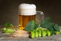 Vidrio de cerveza con los saltos Fotos de archivo libres de regalías