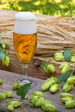 Vidrio de cerveza con los saltos Imagen de archivo