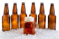 Vidrio de cerveza con seis paquetes de botellas heladas aisladas en pizca Imágenes de archivo libres de regalías
