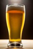 Vidrio de cerveza contra un fondo oscuro Imagenes de archivo