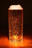 Vidrio de cerveza/de cerveza dorada Fotografía de archivo libre de regalías