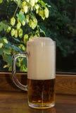 Vidrio de cerveza en un fondo de ramas de saltos Imagen de archivo