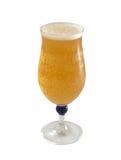 Vidrio de cerveza fresca fresca Fotografía de archivo libre de regalías