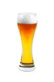 Vidrio de cerveza lleno Imagen de archivo libre de regalías