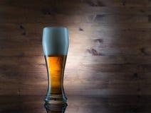 Vidrio de cerveza de oro Foto de archivo