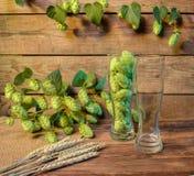 Vidrio de cerveza vacío en la tabla de madera en la barra o el pub, fondo de madera Foto de archivo