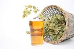 Vidrio de cerveza y con los saltos Imagen de archivo libre de regalías