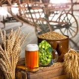Vidrio de cerveza y de materia prima para la producción de la cerveza Imagen de archivo libre de regalías