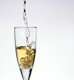 Vidrio de champange Imágenes de archivo libres de regalías
