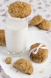 Vidrio de galletas de la leche y de harina de avena en una placa Foto de archivo