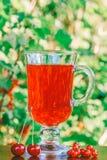 Vidrio de jugo de bayas de la cereza y de bayas rojas del pasa y frescas Fotografía de archivo libre de regalías
