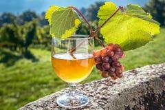 Vidrio de jugo con el manojo de uvas en la piedra Imagenes de archivo