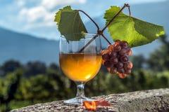 Vidrio de jugo con el manojo de uvas en la piedra Foto de archivo