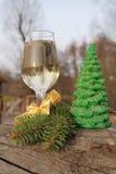 Vidrio de la Navidad Foto de archivo libre de regalías