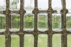 Vidrio de la pared del invernadero imágenes de archivo libres de regalías