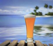 Vidrio de la playa y de cerveza Imagenes de archivo