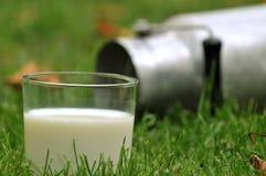 Vidrio de leche fresca en la hierba imagen de archivo libre de regalías