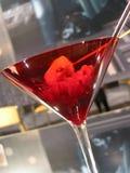 Vidrio de martini del aperitivo imágenes de archivo libres de regalías