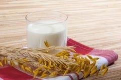 Vidrio de oídos de la leche y del trigo Imagen de archivo libre de regalías