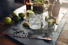 Vidrio de una ginebra y de un tónico recién preparados Imagen de archivo libre de regalías