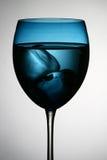 Vidrio de vino Imagen de archivo
