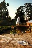 Vidrio de vino fotografía de archivo