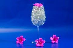 Vidrio de vino azul chispeante Fotos de archivo libres de regalías