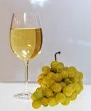 Vidrio de vino blanco Foto de archivo libre de regalías