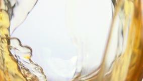 Vidrio de vino de la uva blanca almacen de video