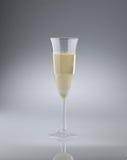 Vidrio de vino espumoso italiano Foto de archivo