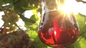 Vidrio de vino rojo metrajes