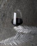 Vidrio de vino rojo Imagen de archivo